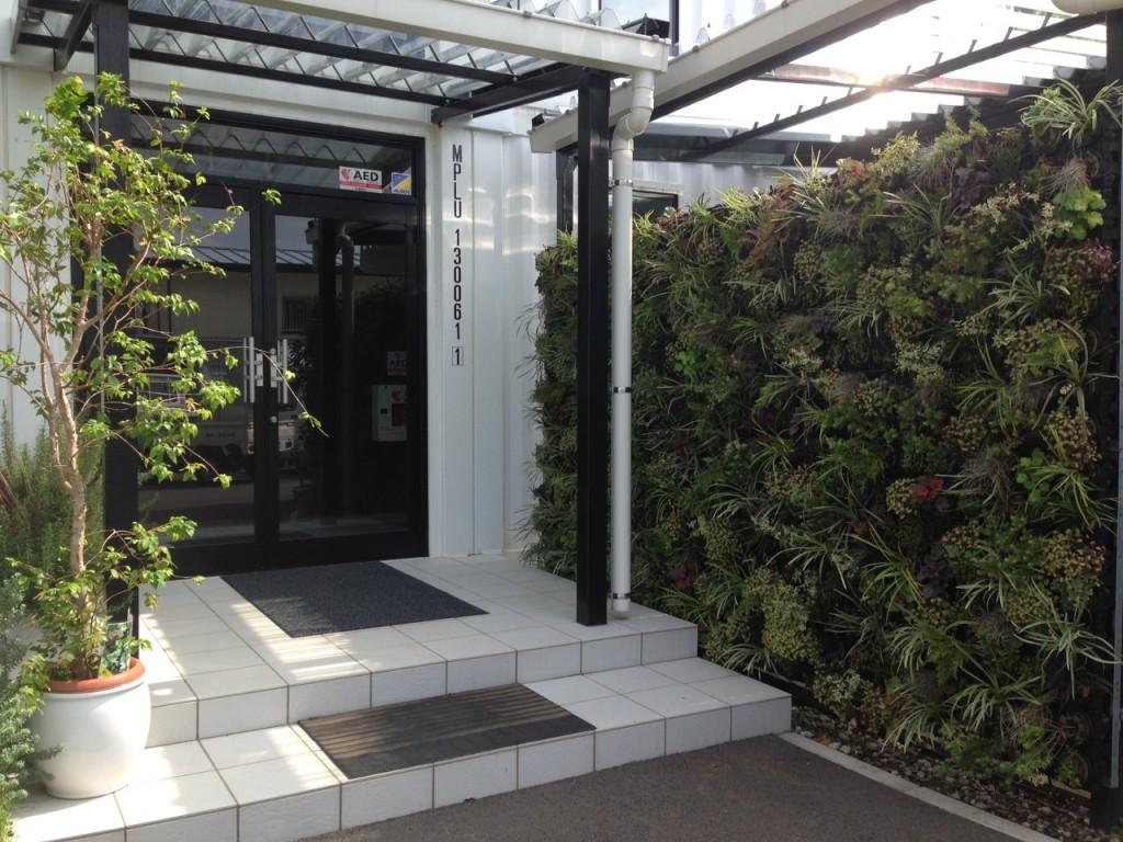 壁面緑化の導入